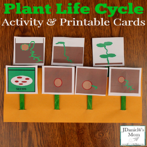 Fern Cycle further A A Aa A D Daf C Teaching Science Teaching Ideas further Vector Illustration Of Bird Life Cycle H Jy furthermore Plant Life Cycle Activity And Printable Cards Featured Revised likewise Maxresdefault. on life cycle of a plant worksheet